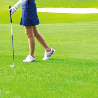 ゴルフツアー